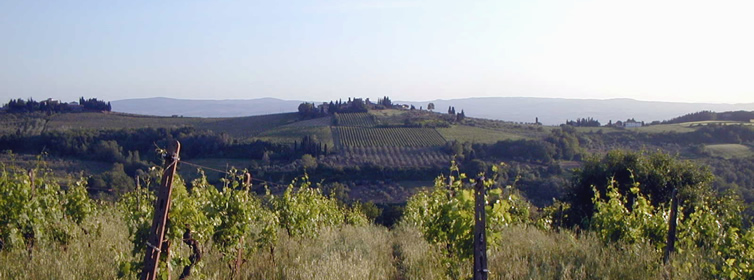 villa_wedding_chianti